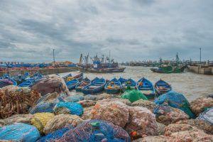 Mare Marocco